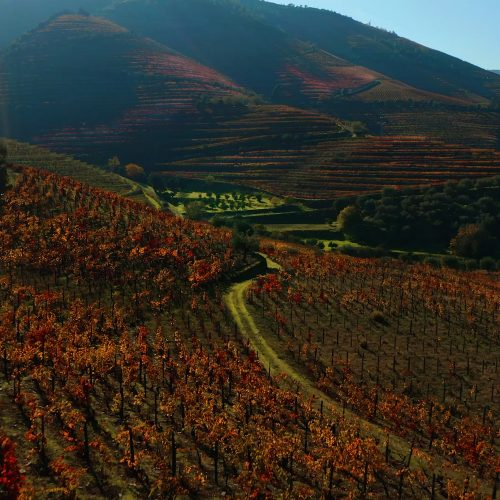 Douro (All year)